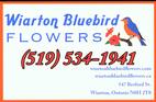 Wiarton Bluebird Flowers